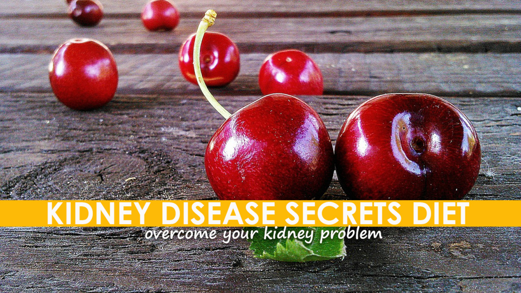Kidney Diet Secrets Review | Is Rachelle Gordon, BSN, RN kidneydietsecrets.com SCAM or Legit?